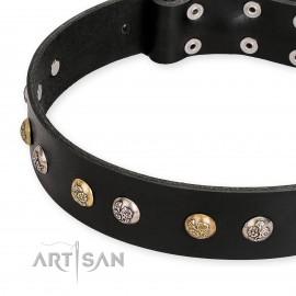 """Dekoriertes schwarzes Lederhalsband FDT Artisan """"Jewelry Peas"""" für Labrador"""