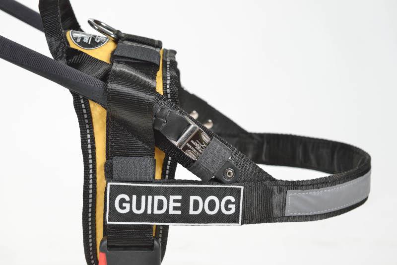 Blindenfuehrhundgeschirr fuer Labrador k9