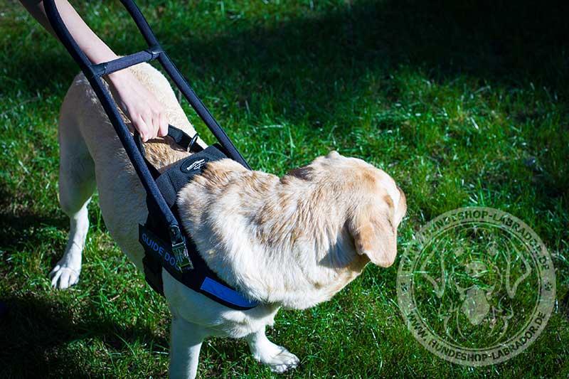 Hundegeschirr aus Nylon für Assistenzhunde Labrador