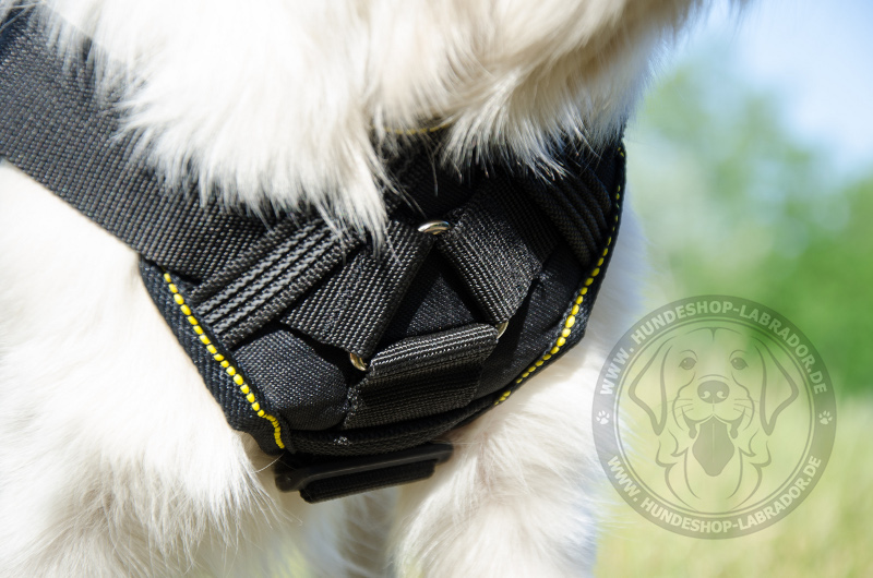 Hundegeschirrk9 aus Nylon
