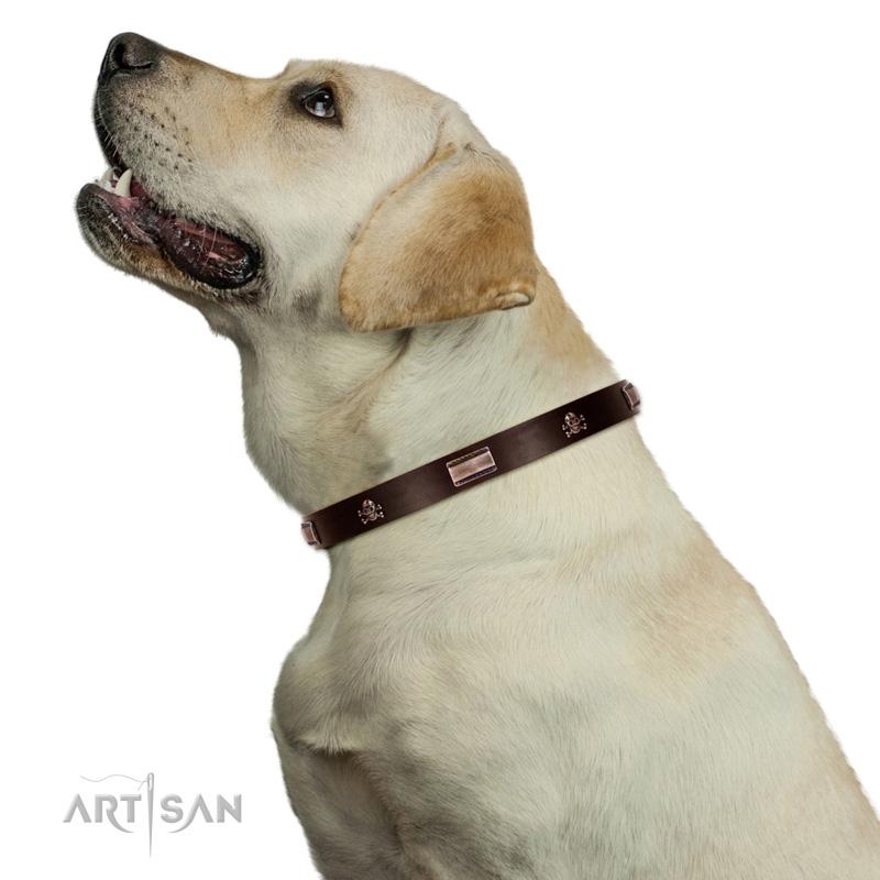 Hundehalsband mit Altbronze Nieten