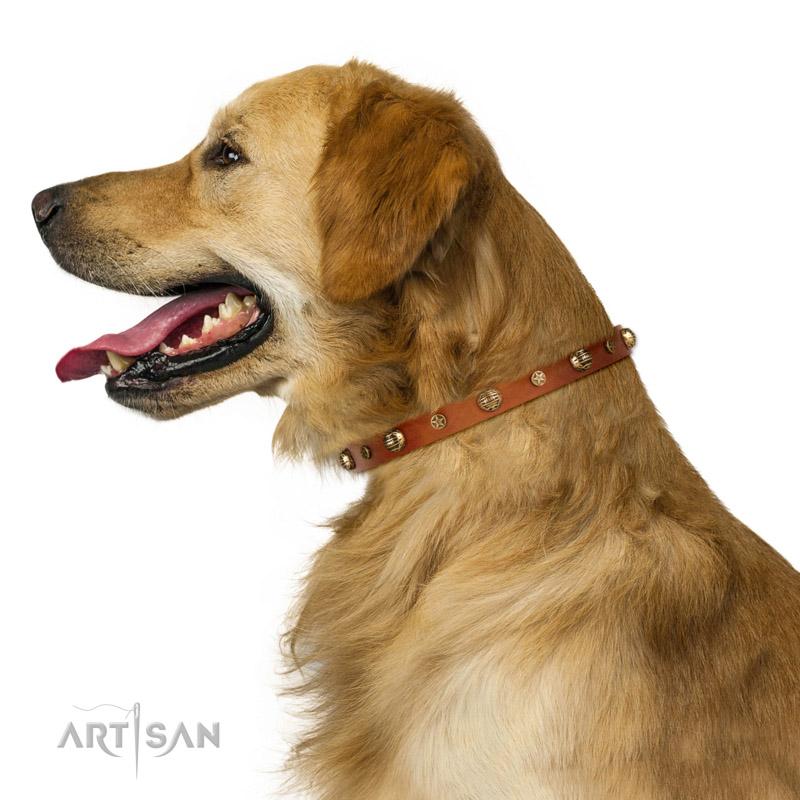 Hundehalsband in natuerlicher Farbe fuer vierbeinigen Famlilienglied