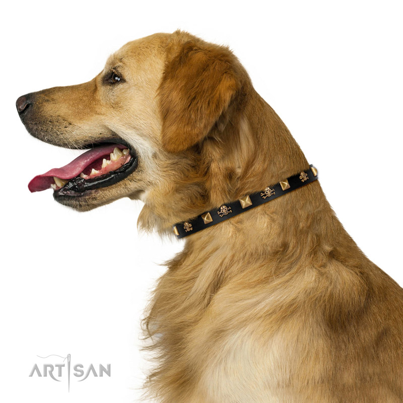 Hundehalsband mit Messing Schaedeln und Nieten