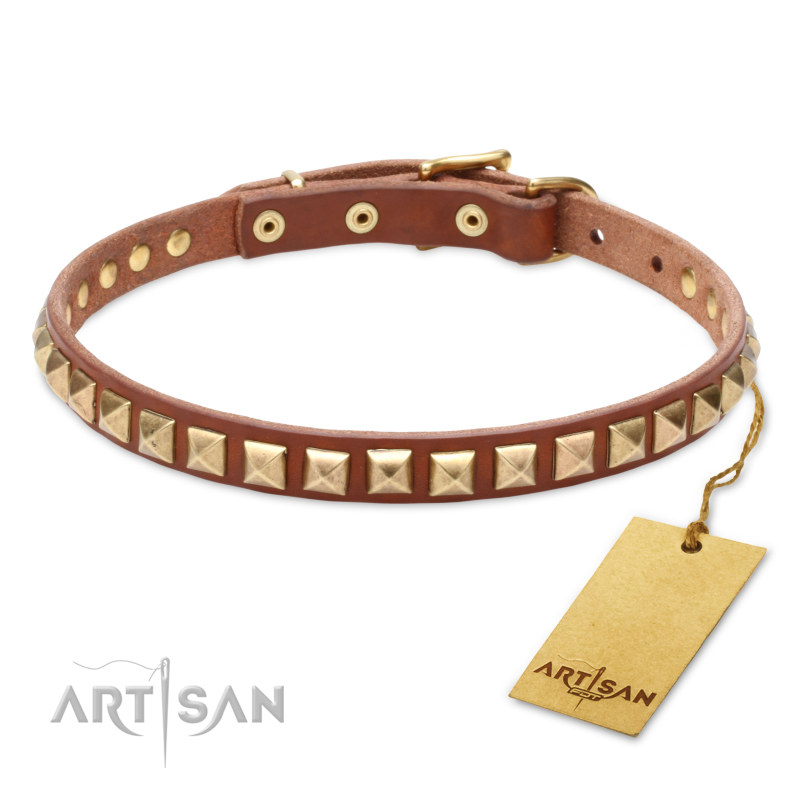 Hundehalsband  in Tan Farbe  fuer Labrador