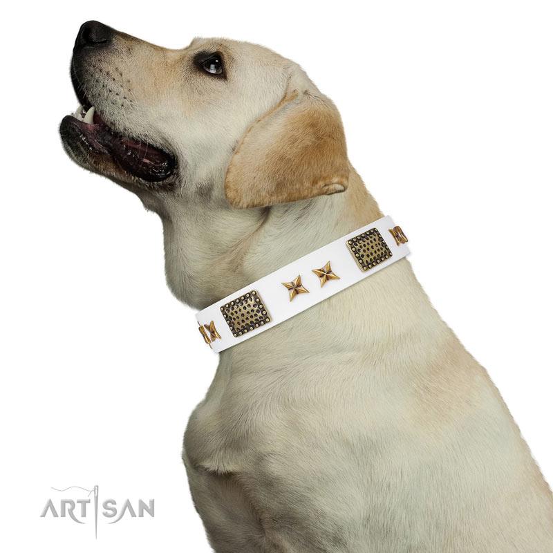 Labrador exklusives Designer Halsband