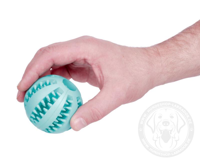 Hundespielzeug Ball aus Gummi fuer Labrador