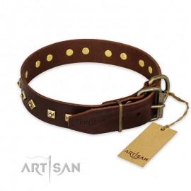 """Braunes Artisan Halsaband """"Fashion Studs"""" für Labrador"""