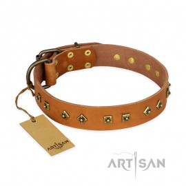 "Labrador Designer Tan Leather Dog Collar ""Autumn Story"""