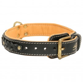 Braided Leather Dog Collar with Nappa Padding for Labrador
