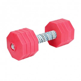 'Hard Workout'  sicheres Apportierholz mit roten Gewichtsplatten