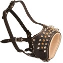 Open Mouth Leather Labrador Muzzle Spiked and Studded