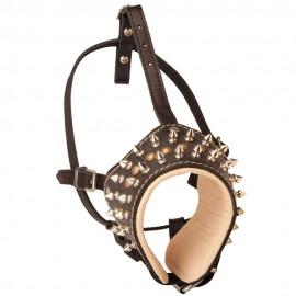 Designer Maulkorb  Leder mit Spikes für Labrador stilvoll