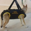 Hundegeschirr Nylon für Rettungshunde