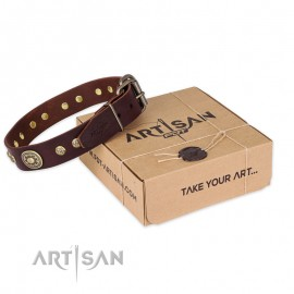 "Dark-Brown Leather Dog Collar with oval Plates ""Chocolate Kiss"""
