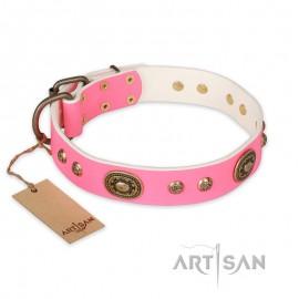 "Exclusiv FDT Artisan Leather Dog Collar  ""Sensational Beauty"""