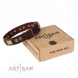 """Perfect Brown Leather Dog Collar for  Labrador """"Breath of Elegance"""""""