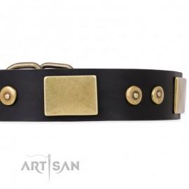 """Spanish Night"" exklusiv FDT Artisan Leather Dog Collar for Labrador"