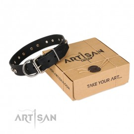 'Pirates Gold' FDT Artisan Black Leather Dog Collar with Old Silver Look Plates and Skulls
