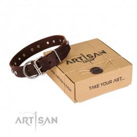 "Original Brown Leather Dog Collar ""Pirate Skulls"" by FDT Artisan"