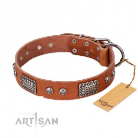 """Sparkling Skulls"" FDT Artisan Leather Dog Collar for Labrador in natural colour"