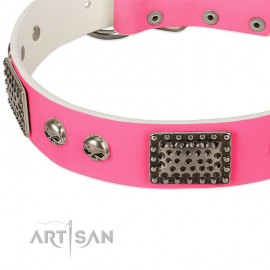 Fashion Skulls'  Pink Leather Dog Collar for Labrador
