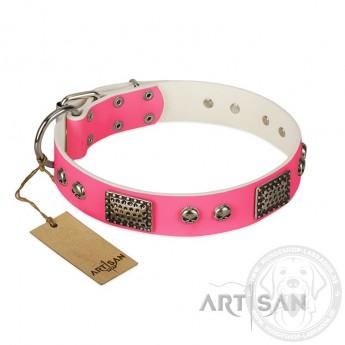 """Tolles Halsband aus pinkem Leder für Weibchen-Labrador """"Fashion Skulls"""""""