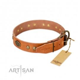 """Ledernes Hundehalsband in natürlicher Farbe """"Sin Beams"""" für Labrador"""