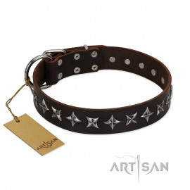 """Brown Leather Dog Collar with Silvery Stars""""Stars of Glory"""""""""""