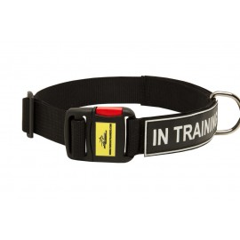 Labrador Training Collar with ID Patches and Buckle
