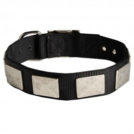 Nylon Labrador Collar with Nickel Plates