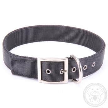 Leichtes Halsband aus Nylon für Labrador in klassischem Design