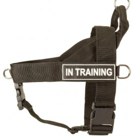 Labrador Harness with ID Patches for All-Weather Activities