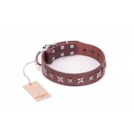 Brown Dog Collar for Labrador  with Stars Design FDT Artisan