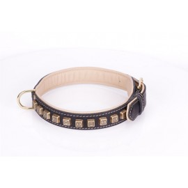 Black Leather Dog Collar with Brass Studs