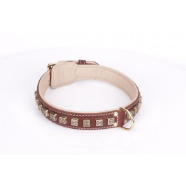 Brown Fordogtrainers Leather Dog Collar with Brass  Studs