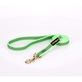 Dog Lead Made of Nylon for Labrador in Green