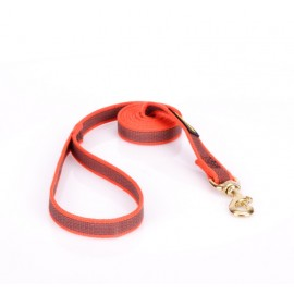 Dog Lead Made of Nylon for Labrador in Orange