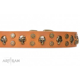 FDT Artisan Leather Dog Collar with Brass Decorations