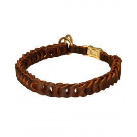 Labrador Training Collar of Braided Leather