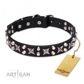 """""""Shining Stars""""  modisches Hundehalsband aus Leder für Labrador"""