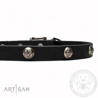 Leather Dog Collar with 1 Row Nickel Studs