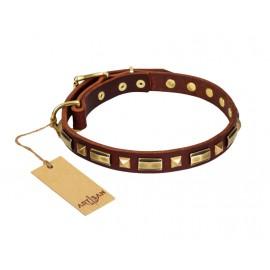 """Golden Elegance"" chic Leather Dog Collar FDT Artisan"