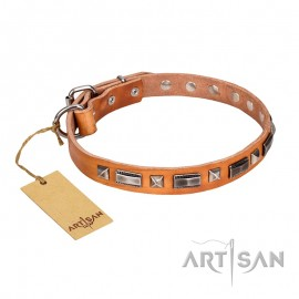 """Wealth Effulgence"" Leather Dog Collar FDT Artisan"