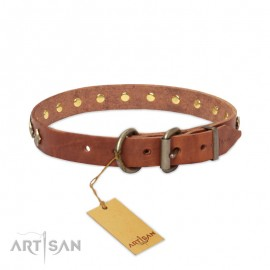 """Interstellar"" exclusiv  Leather Dog Collar with Stars by FDT Artisan"
