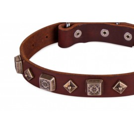 """Yellow Star"" exclusiv  Leather Dog Collar with Stars by FDT Artisan"