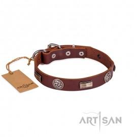 Labrador Platten und Kreise verziertes Lederhalsband