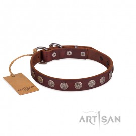 Ledernes Hundehalsband mit runden Platten von FDT Artisan