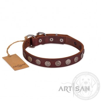 FDT Artisan Plates and Circles Leather Dog Collar