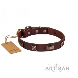 Ledernes Hundehalsband von FDT Artisan mit Sterne und Platten