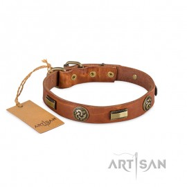 FDT Artisan Plattes and Flowers Leather Dog Collar for Labrador